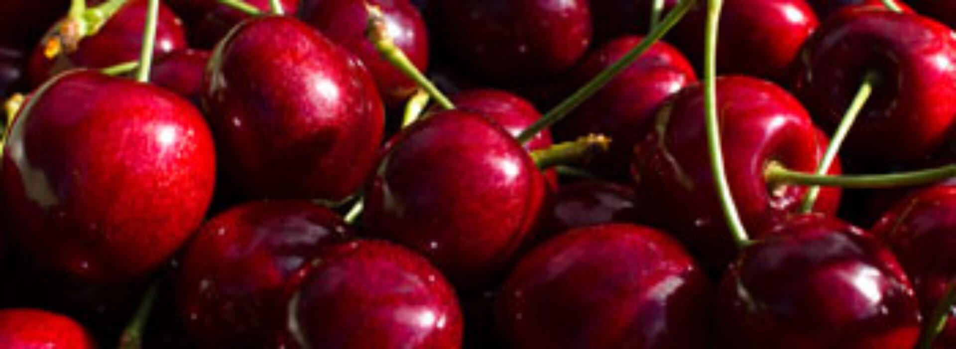 Ullensvang Fruktlager